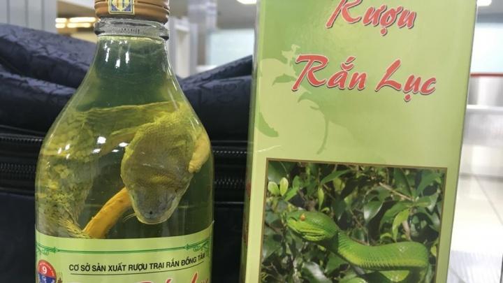 Очень странный сувенир: кольцовские таможенники нашли у пассажиров бутылки с заспиртованными змеями