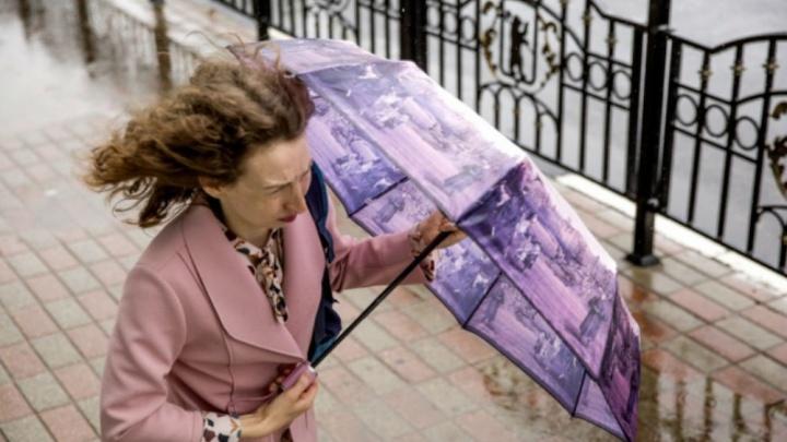 Экстренное предупреждение: в Ярославле будут бушевать ветра