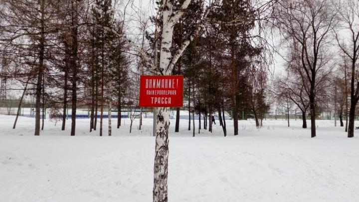 В мэрии прокомментировали гибель омички после удара о столб в Советском парке