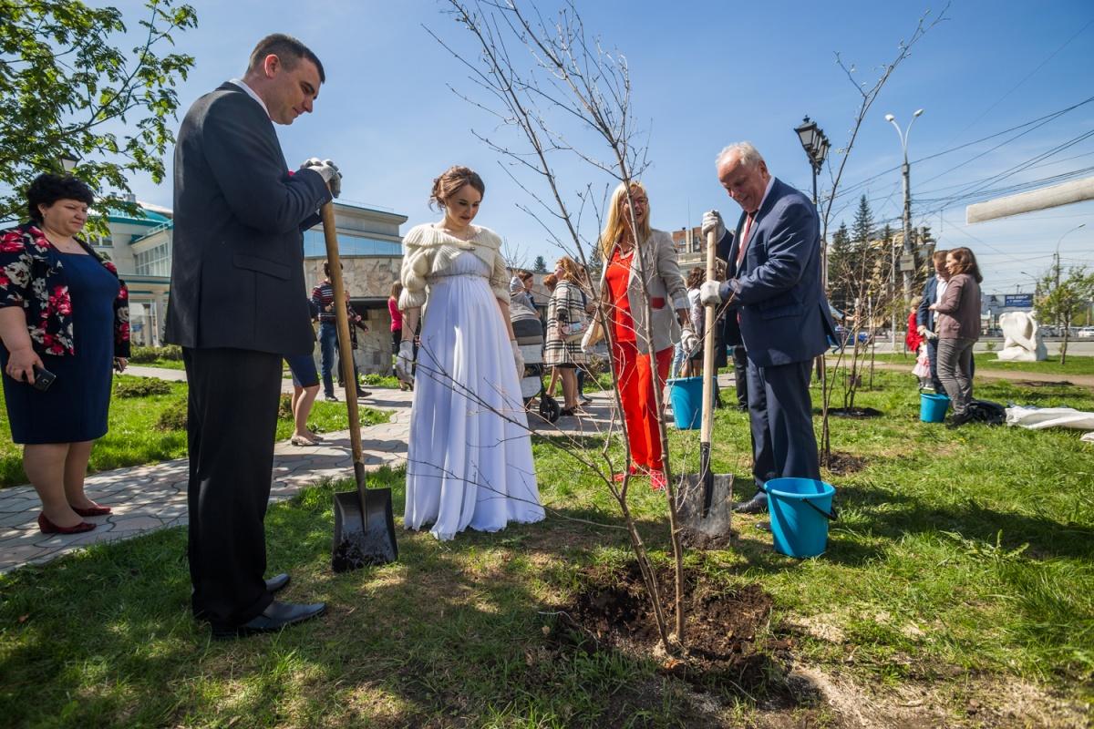 Молодожены садят деревья возле Дворца бракосочетания