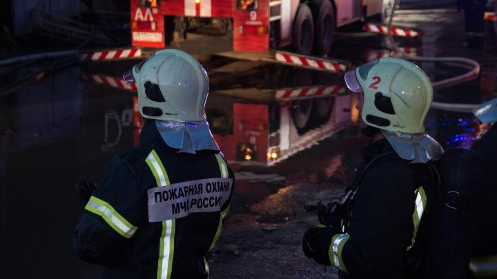 Площадь пожара — 1600 квадратных метров: ночью на Кабельной горели деревянные поддоны