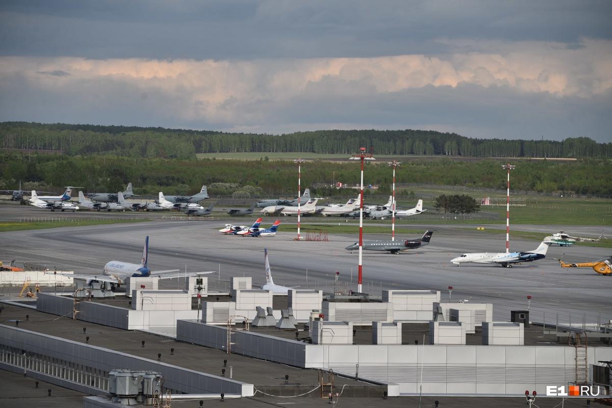 Быстро пакуем чемодан и бежим в отель за пилотом: E1.RU прошел пассажирский квест в Кольцово