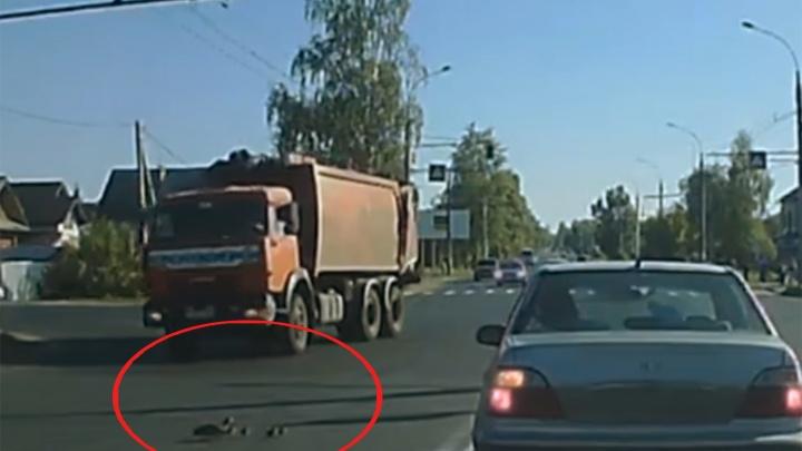 В Рыбинске водители остановились на оживлённой дороге, чтобы пропустить утиное семейство: видео