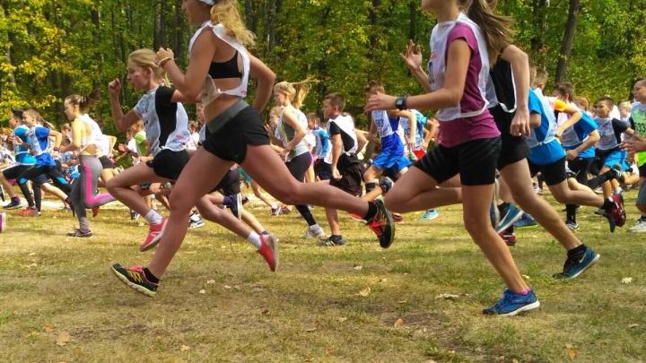 Около 9000 самарцев вышли на «Кросс Нации» во всероссийский день бега