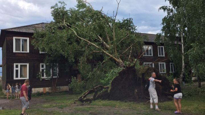 По Лесосибирску прошел разрушительный ураган: повалены деревья и строительный кран