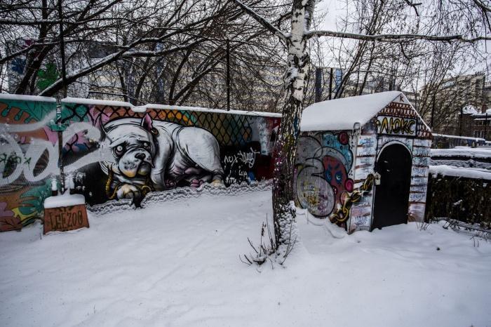 Забор, за которым скрывается многолетний пустырь, покрыт не одним слоем граффити, — сейчас землю «охраняет» пёс на цепи.