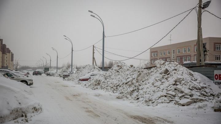 Город сугробов. НГС узнал в мэрии, почему снег в Новосибирске вывозят не со всех улиц