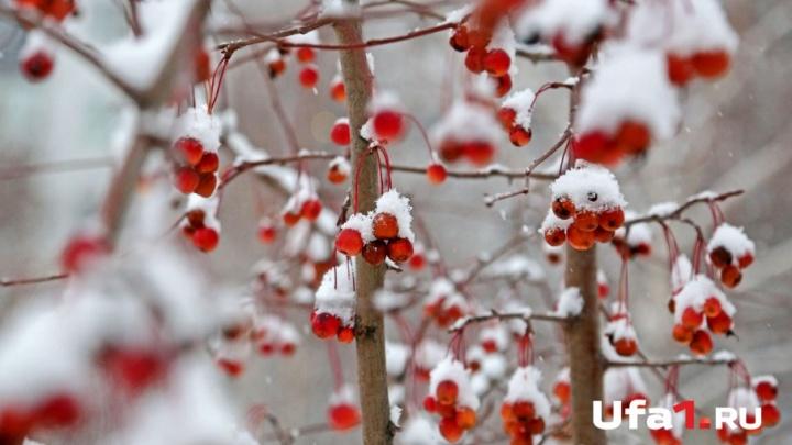 Синоптики Башгидромета рассказали о погоде на выходные