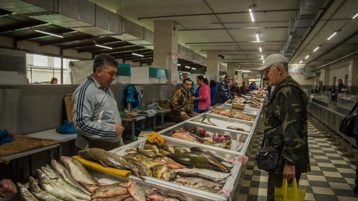 Ростовского прокурора удивили наглые браконьеры, открыто продающие раков, судака и шемаю