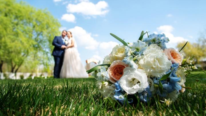 Теща по расписанию: ростовчане — о странных пунктах в своих брачных контрактах
