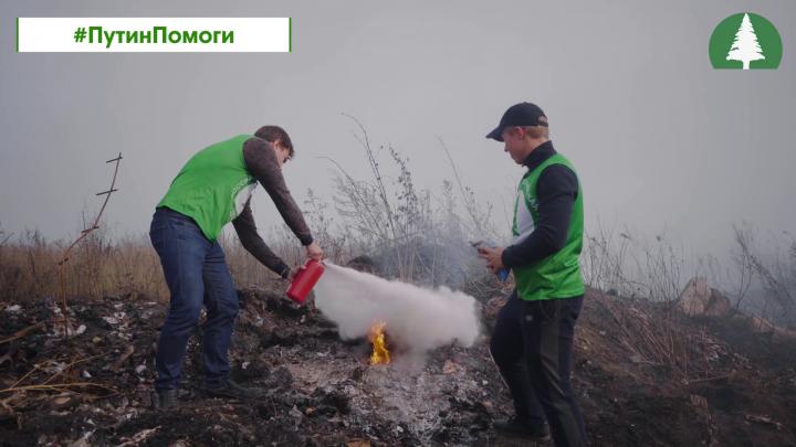 Новосибирцы попросили Путина потушить горящие свалки