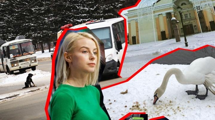 Хабиров отменил корпоративы, давка за телевизорами, приговор по секс-скандалу. События за неделю