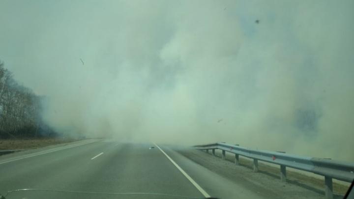 Трассу под Новосибирском заволокло дымом от горящей травы