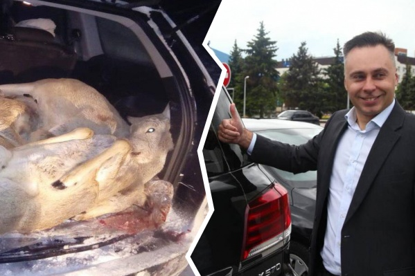 Шесть косуль лежали в багажнике Красноштанова. Некоторые из них были беременны