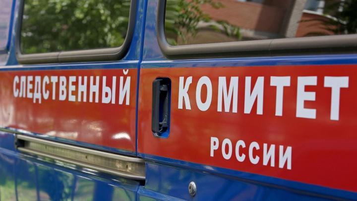 В Краснокамске за сексуальную связь с девочкой-подростком будут судить 19-летнего парня