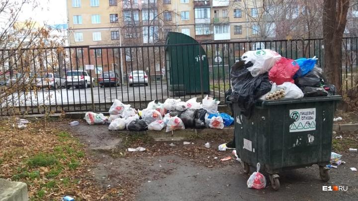 Помойка осталась за забором: жильцы нескольких домов на Гагарина не смогли выбросить мусор