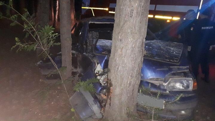 В Кетовском районе водитель врезался в дерево. Один пассажир в больнице, второй— погиб