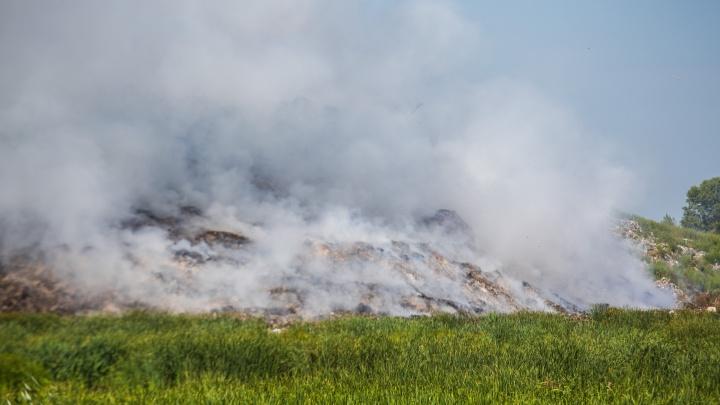 Дым родных отбросов