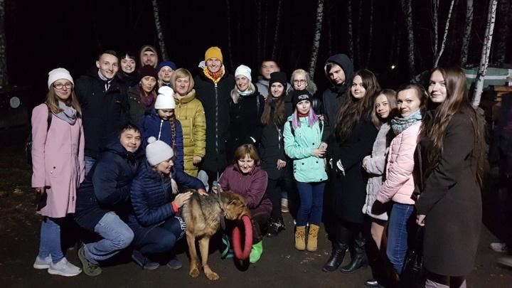 Победитель «Битвы экстрасенсов» привёз в приют 800 килограммов собачьей еды