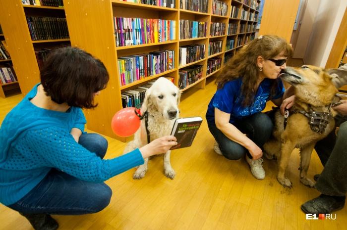 Акция пройдет сразу в четырех городских библиотеках
