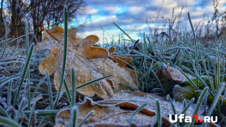 Ночные заморозки: в Башкирии похолодает до -3 градусов