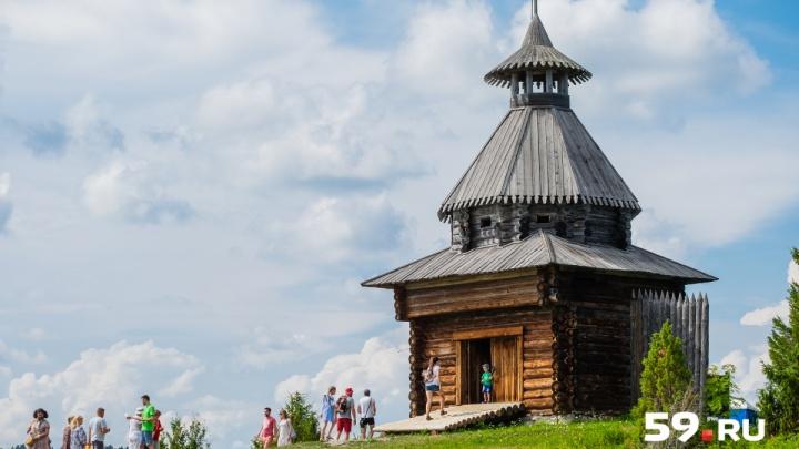 В Хохловке на одном из фестивалей «Пермский период. Новое время» устроят «Похороны мух»
