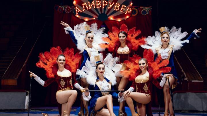 Ручной леопард, пляски с медведем, тандем эквилибристов: в Ростов приехала новая цирковая программа