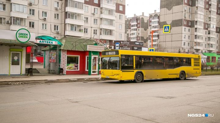 Новый тариф на проезд в 26 рублей: сколько идёт на бензин, а сколько — в карман перевозчика