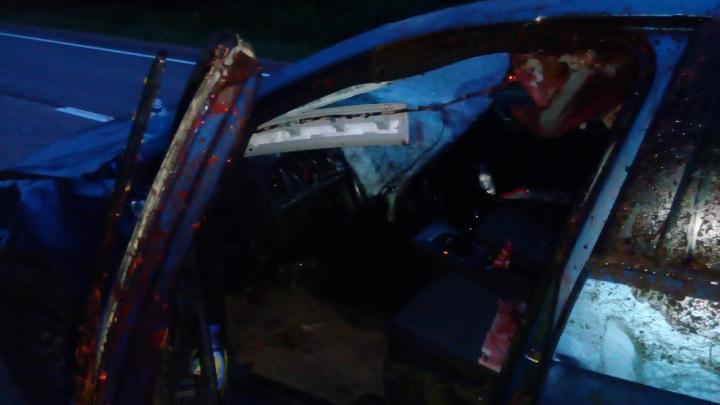 Машина врезалась в дерево: сегодня ночью на трассе в Ярославской области погиб водитель