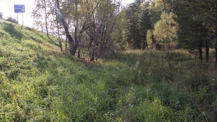 Убила и сутки сидела с ним в лесу: подробности гибели 5-месячного ребенка из Заводоуковска