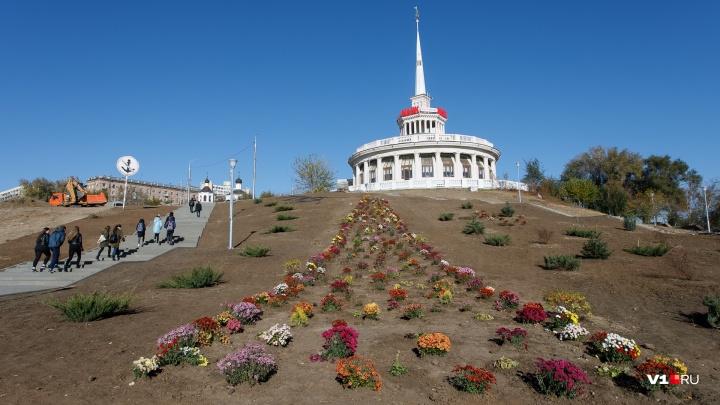 «Засадим всё кровохлёбкой»: в пойме Царицы начали высадку новых кустов и цветов