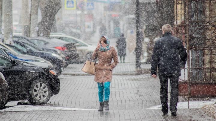 На Челябинскую область обрушится мокрый снег с сильным ветром