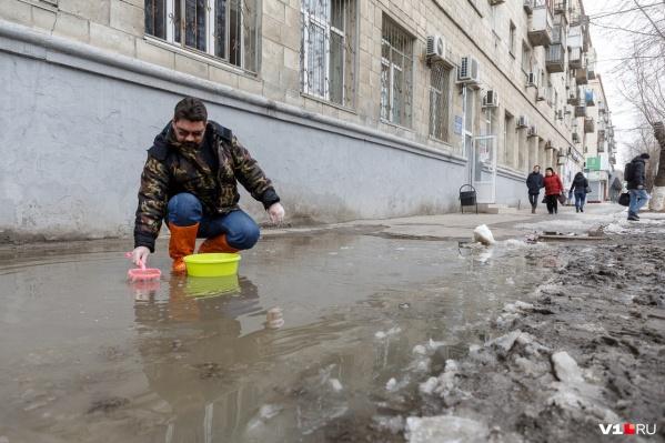 Лужа в центре Волгограда уже стала одной из достопримечательностей города