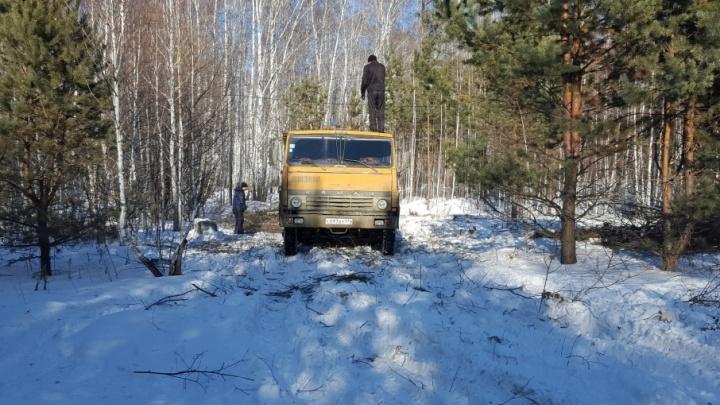 Власти назвали незаконной вырубку деревьев в новом микрорайоне Челябинска
