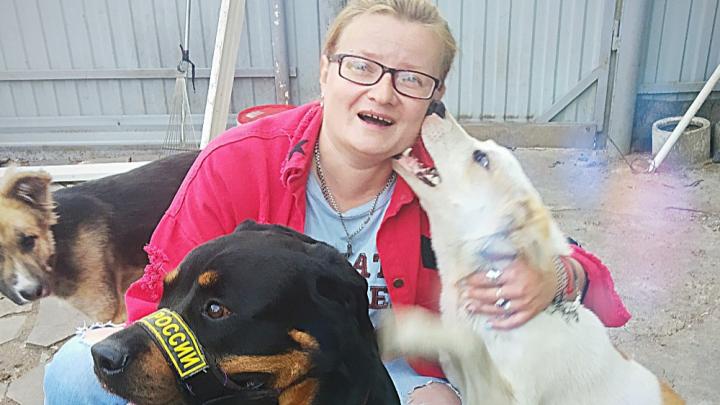 «Вы поддерживаете догхантеров»: зоозащитница из Стерлитамака — об экспертизе тел погибших щенят