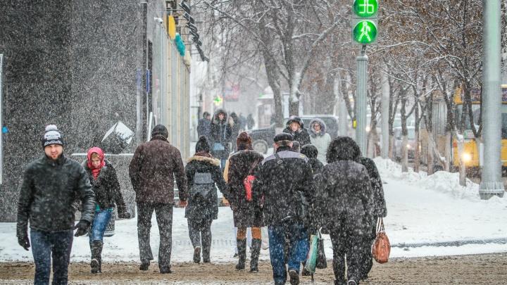 От дождя к снегу: какая погода ожидает Ростов в сочельник