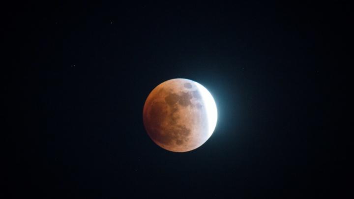 Хорошо увидит фотоаппарат: этой ночью Луна потускнеет в небе над Новосибирском