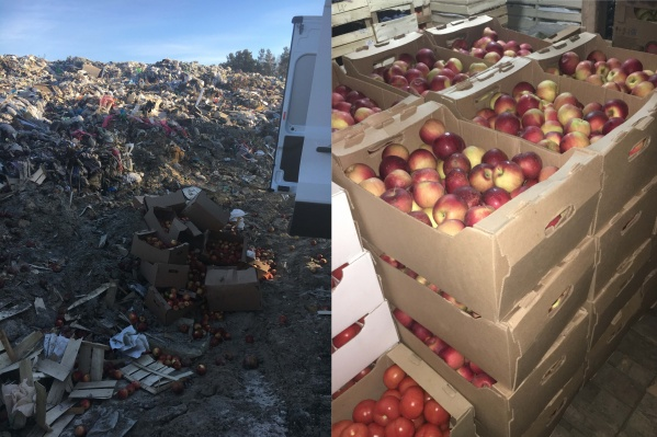 Яблоки раздавил бульдозер после того, как они не прошли проверку