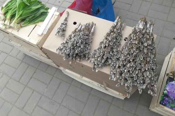 Пушистые веточки начали продавать задолго до Вербного воскресенья