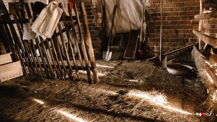 Четверо южноуральцев погибли при очистке погреба от старой картошки