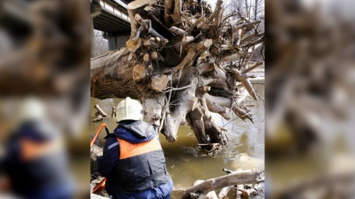 Разгоняя лед: уфимские спасатели расчистили реку Дему