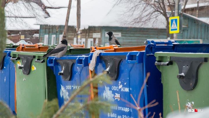 В Самарской области тариф на вывоз мусора планируют увеличить почти до 1000 рублей