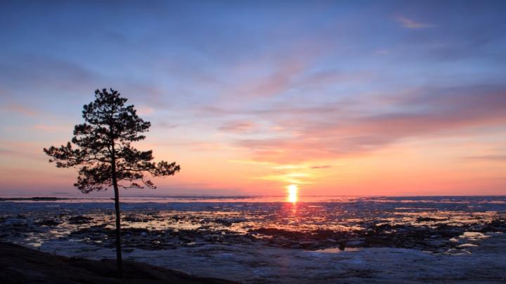 Как меняется Белое море: уроженка Онежского района сняла ледоход в родных местах