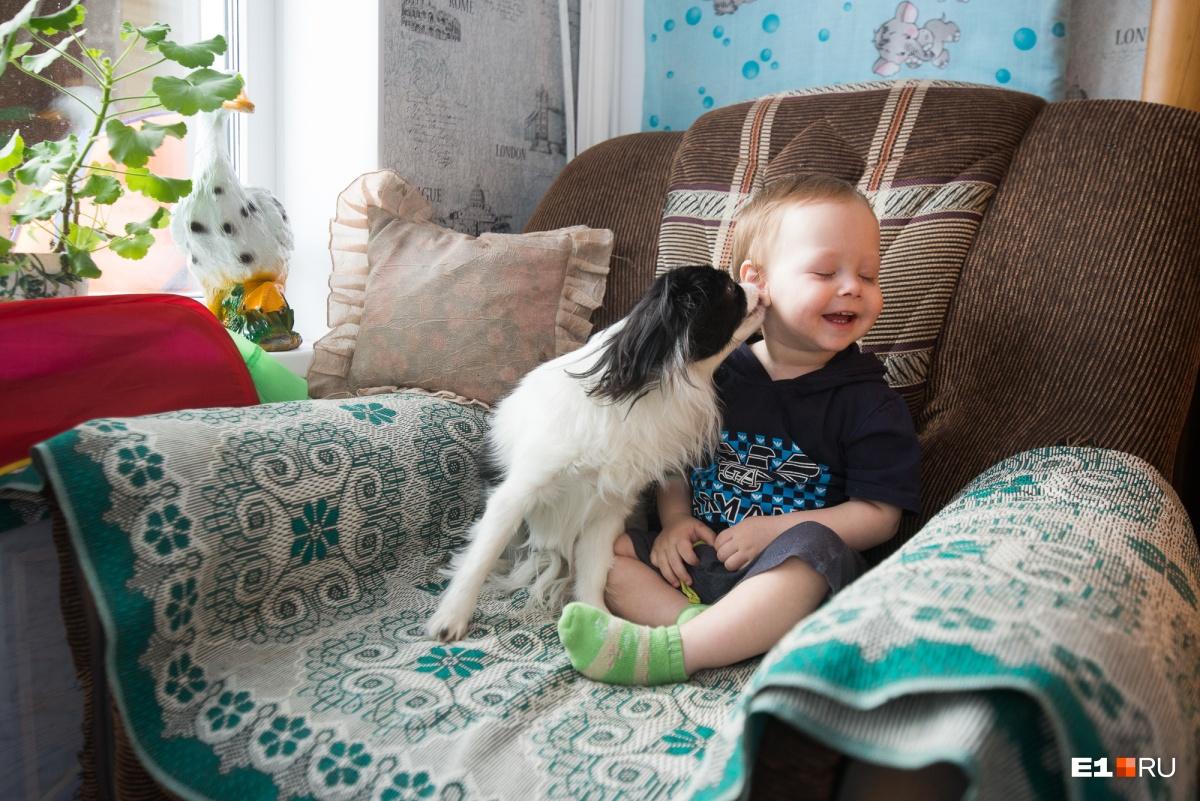 Миша с бабушкиной собакой Соней