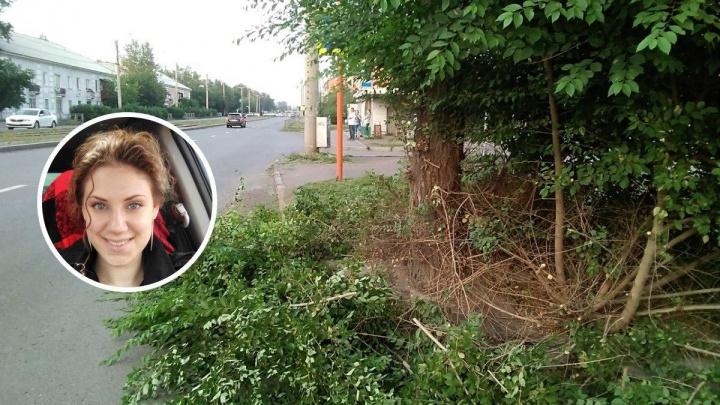 «Человеческая жизнь важнее веток»: автолюбительница обрезала зелень, закрывающую обзор на переходе