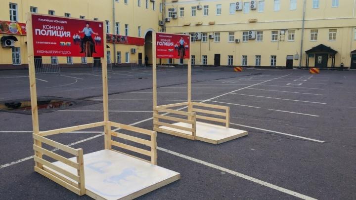В Ярославле автомобилистам будут выписывать штрафы за парковку на местах для коней