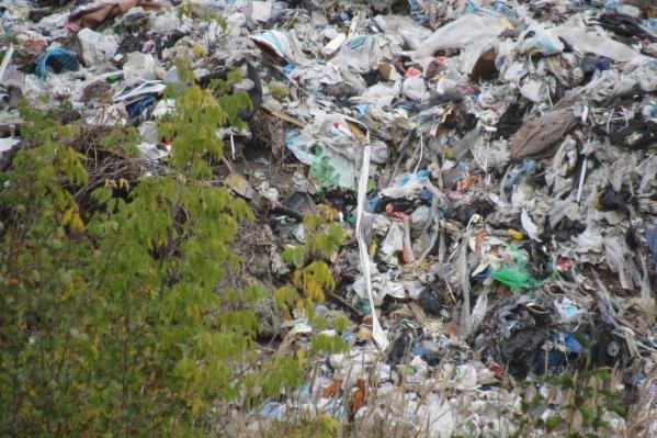 Разбираться в причинах появления опасных отходов будут силовики и специалисты областного Управления Роспотребнадзора