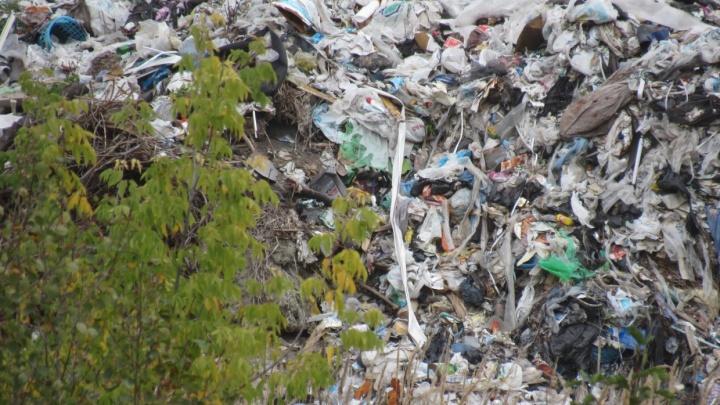 В Кургане на складах по улице Омской нелегально сжигали опасные отходы