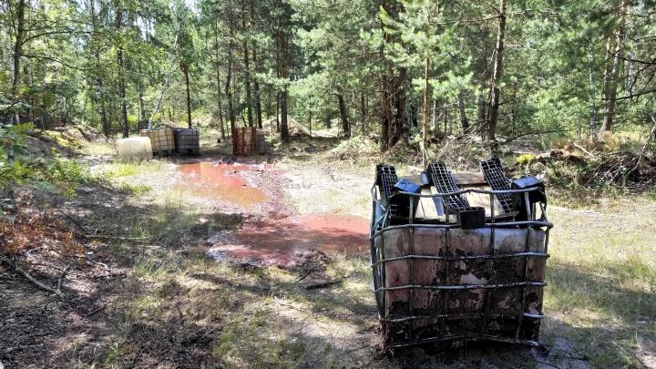 «Химикаты могут попасть в питьевую воду»: в Дзержинске нашли свалку ядовитых отходов. Опять