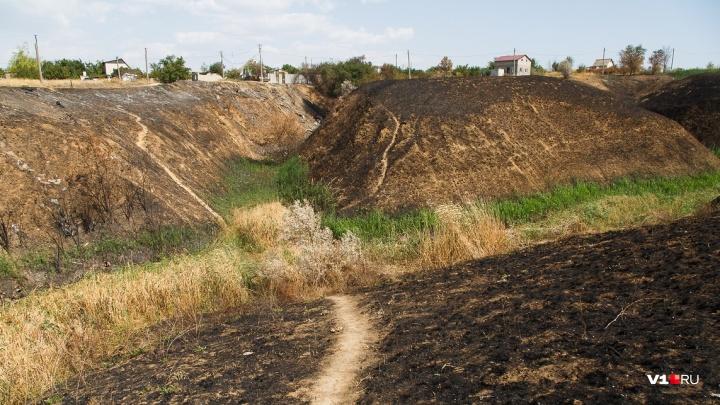 МЧС предупредило волгоградцев о сильной жаре и угрозе пожаров